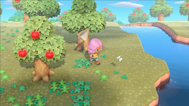 Configurare la propria isola su Animal Crossing